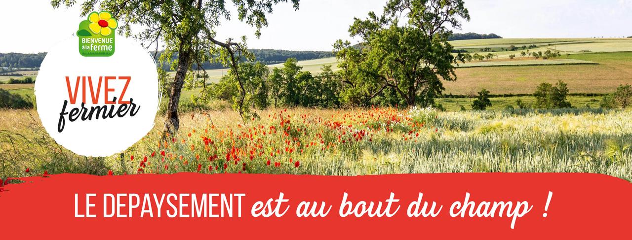 Vivez fermier chambre d 39 agriculture meuse - Chambre agriculture ille et vilaine ...